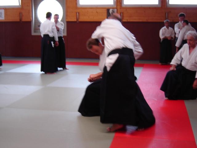 aikido-113