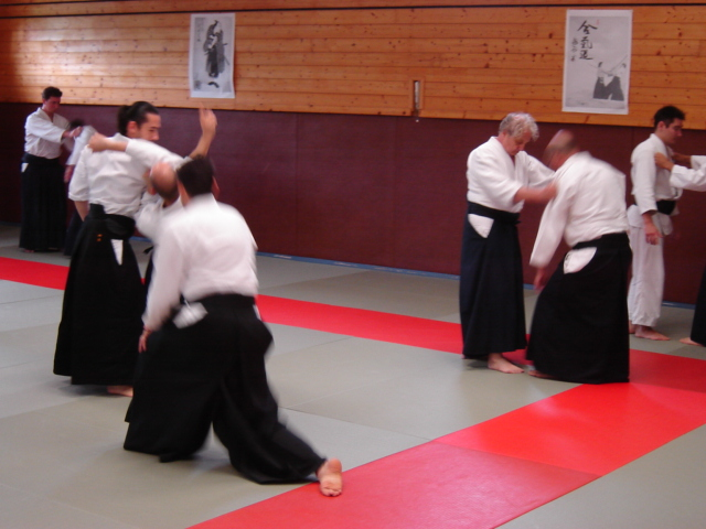 aikido-118