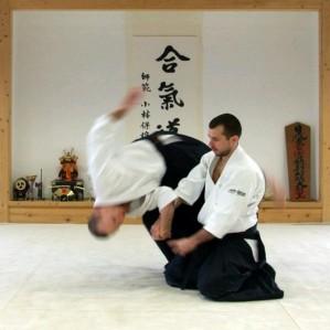 aikido-shiatsu
