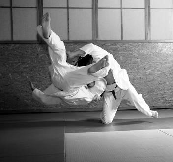 judo_com_crop_0-0-352-330-352-330