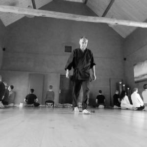 Gudo Zen - Corpore 2014